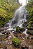 A fada cai no desfiladeiro do Rio Columbia na mola Fotos de Stock Royalty Free
