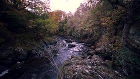 Fada Glen Gorge Waterfall no outono em Gales norte, Reino Unido filme