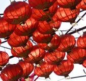 Fada-luzes Imagem de Stock