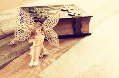 Fada pequena mágica na floresta ao lado do livro velho da história Fotografia de Stock Royalty Free