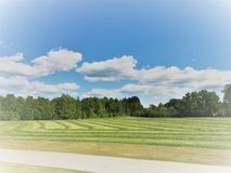 Faded farm field. Faded newly cut grass field royalty free stock images