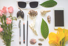 Faded flat lay with flowers and shells on white photo background Royalty Free Stock Photography