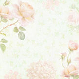 Faded floral paper Royalty Free Stock Image