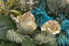 Faded flowers close up. Bouquet of pink roses and turquoise chrysanthemums stock photo
