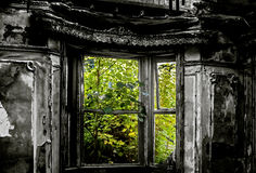 Faded Glory No.1. A view from inside an abandoned and decayed house with the surrounding plant life slowly reclaiming the house as Nature's own. The lush colour Royalty Free Stock Image