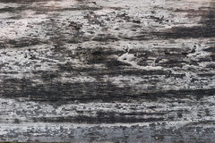 Faded Old Plank. Close-up of an old faded black and grey plank stock images