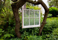 Faded painted window frame in garden Stock Image