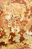 Faded peeling paint. On wall stock photography