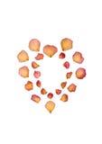 Faded Rose Petal Heart Royalty Free Stock Image