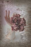 Faded roses in a porcelain hand, rough style Stock Photos