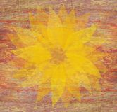 Faded sunflower. Illustration of a sunflower on an orange grunge style background could be used as greetings card Royalty Free Stock Image