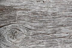 Faded timber texture Royalty Free Stock Image