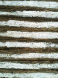 Faded white paint on a wooden fence Royalty Free Stock Image