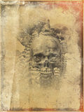 Faded worn skull. Worn and weathered skull and bones illustration Stock Photos