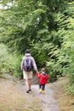Fader och barn som går i en skog Arkivbild