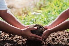 fader och barn som hjälper plantera det lilla trädet arkivbild