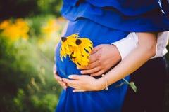 Fader och gravida moderinnehavhänder samman med gulingblommor på en grön äng Arkivfoton