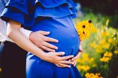 Fader och gravida moderinnehavhänder samman med gulingblommor på en grön äng Arkivbild
