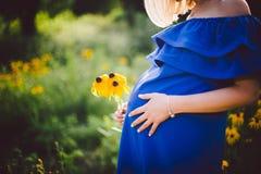 Fader och gravida moderinnehavhänder samman med gulingblommor på en grön äng Royaltyfri Foto