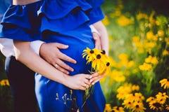 Fader och gravida moderinnehavhänder samman med gulingblommor på en grön äng Arkivfoto