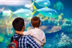 Fader och son i oceanarium Arkivbild