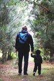 Fadern och sonen går i barrskogen bland sörjer Begreppet av familjevärderingar, vandring arkivbilder