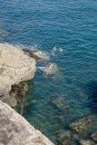 Fadern undervisar barn att simma i havet Fotografering för Bildbyråer