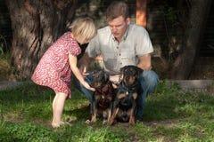 Fadern visar till dottern, som det är nödvändigt att behandla hunden Royaltyfri Bild
