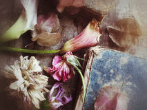 Fading flowers and old book textures Stock Photography