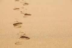 Fading Footprints in the Sand. Footprints in the Sand Made with Bare Feet on the Beach Royalty Free Stock Photos