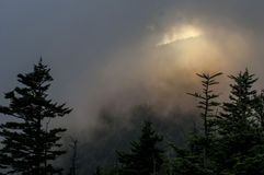 Fading light on Clingman's Dome in the Smokies Royalty Free Stock Photography