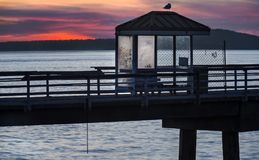 Sunset over Fishing Pier and Puget Sound. Fading Winter Light Silhouettes a Fishing Pier and Seagull at Elliot Bay Park in Seattle, Washington at Sunset Stock Photos