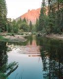 Fadingu słońce w dolinie Yosemite zdjęcia royalty free