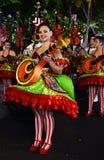 Fado-Bezirk - populäre Parade-Festlichkeiten Lizenzfreie Stockfotos