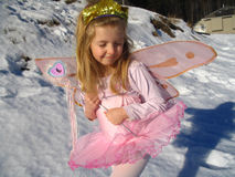 Faerie della neve fotografia stock libera da diritti