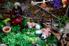 Faerie and Faerie Foxes in Faerie Garden Stock Photography