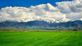 Fagaras山在罗马尼亚,在春天有山的在背景中 库存照片