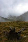 Fagaras山的壮观的看法在雾的 免版税库存照片