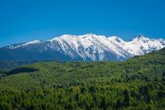 Fagaras Berge, Rumänien Stockfotografie
