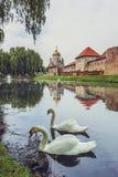 Fagaras forteca, Fagaras, Rumunia Obraz Royalty Free