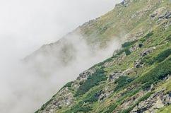 Fagaras góry, Carpathians z zieloną trawą i skałami, Osiągają szczyt Obraz Royalty Free