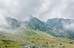 Fagaras góry, Carpathians z zieloną trawą i skałami, Osiągają szczyt Obrazy Stock