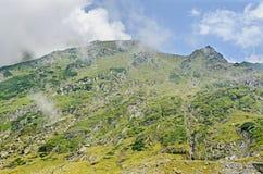 Fagaras góry, Carpathians z zieloną trawą i skałami, Osiągają szczyt Fotografia Royalty Free