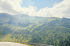 Fagaras góry, Carpathians z zieloną trawą i sosna lasami Fotografia Stock