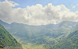 Fagaras góry, Carpathians z zieloną trawą i sosna lasami Obraz Royalty Free