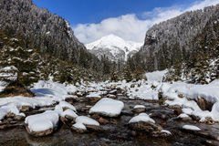 The Fagaras Mountains Stock Photography