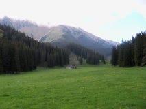 Fagaras Mountains landscape  Stock Images