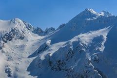 The Fagaras Mountains in winter Royalty Free Stock Photo
