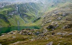 fagaras som fotvandrar berg Royaltyfri Bild