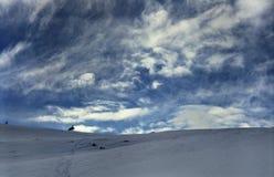 fagarash krajobrazu Fotografia Royalty Free